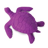 Sea Turtle Erase-Amals